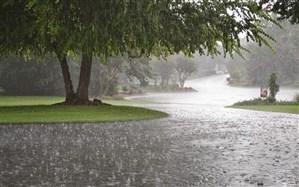 جزئیات پیشبینی آب و هوای کشور در ۱۴ روز تعطیلات نوروز