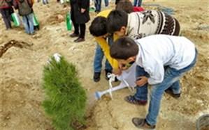 کاشت ۳ هزار اصله نهال به یاد شهدای استان ایلام