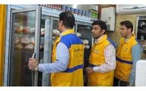 طرح تشدید کنترل و نظارت بهداشتی دامپزشکی ویژه ایام نوروز ۹۷ در سطح استان عملیاتی می شود