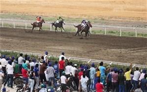 هفته سی و ششم و قهرمانی مسابقات اسبدوانی پاییزه کشور در گنبدکاووس برگزار شد
