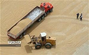 مجری طرح گندم اعلام کرد: برآورد تولید ۱۳.۴ میلیون تن گندم در سالجاری