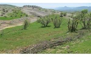 چهارهزار و 237 هکتار از اراضی ملی در اردبیل پس گرفته شد